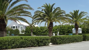 Luxurios Alys Beach