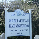 Blue Mountain Beach Homes for Sale