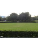 Watercolor Fl Soccer Field