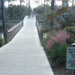 Watercolor Fl Foot Bridge