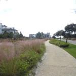 Watersound Beach Pedestrian path