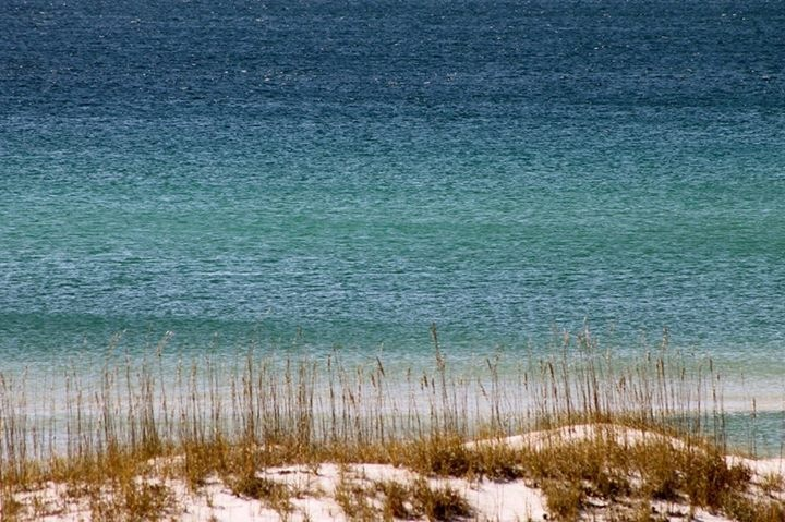 Economic news for 2014 on 30A