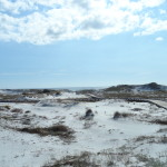 30a short sales and foreclosures